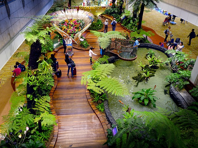 Changi Airport, Singapore by cegoh CC0
