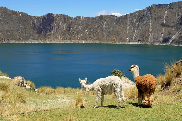 worldwide travel insurance Ecuador Image